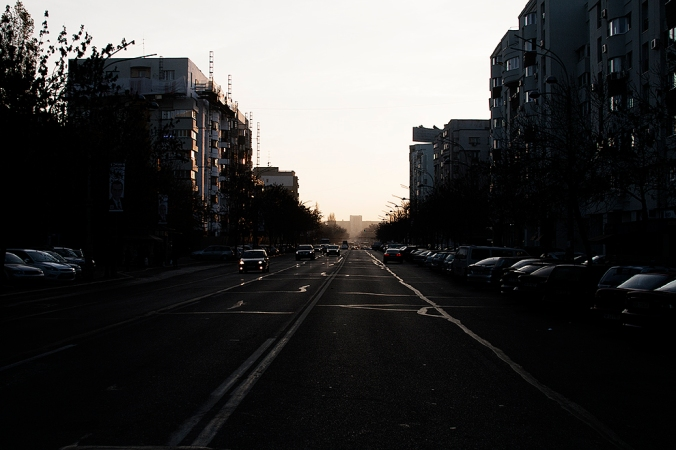 IMG_2943